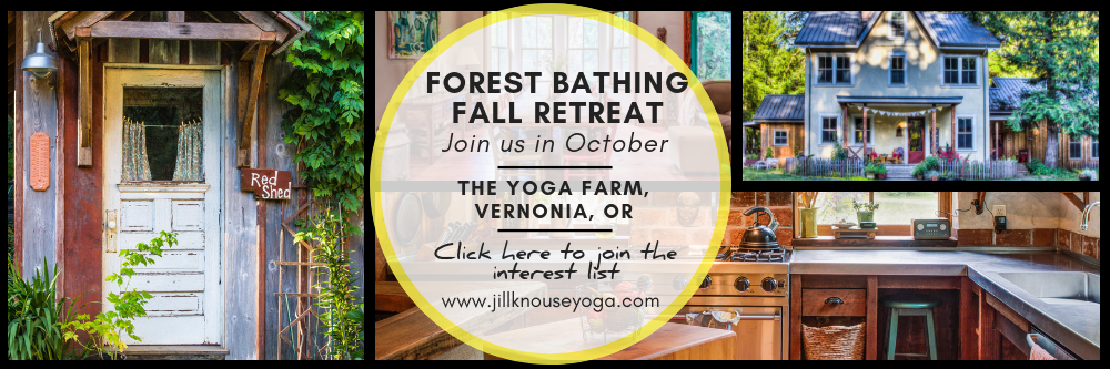 Forest Bathing Retreat 2019 Banner
